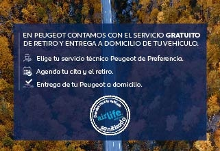 Pick Up Peugeot Chile